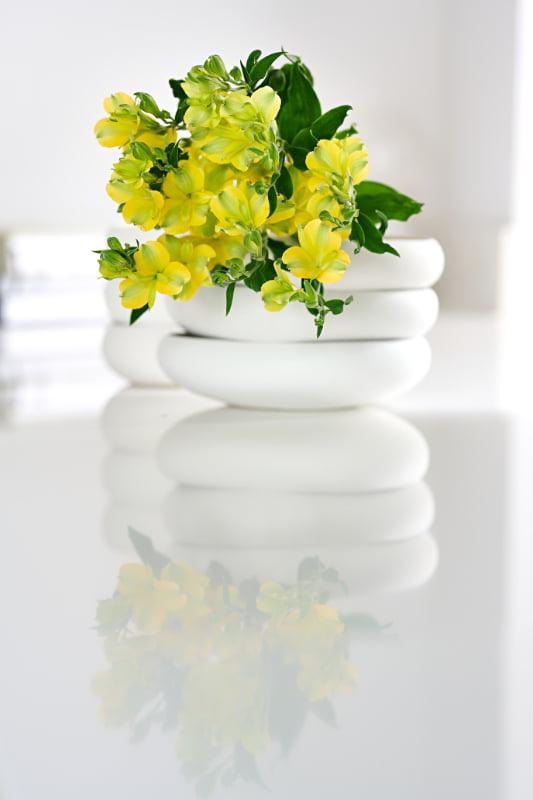 Charmelia Yellow_19